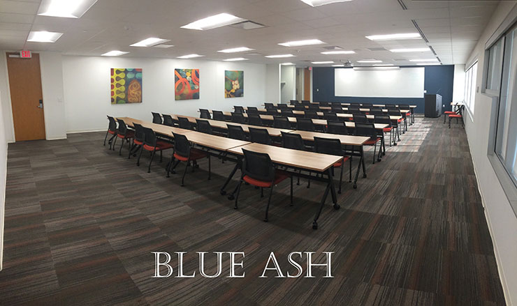 Blue Ash large conference room